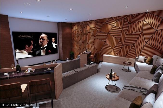 Theatre / KTV Room