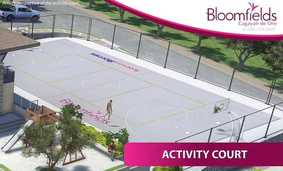 Activity Court