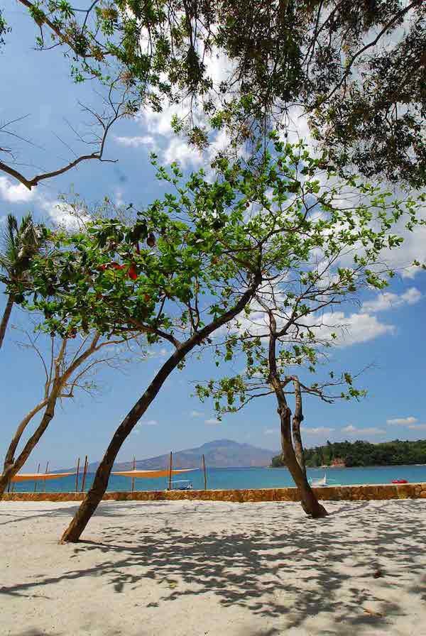 Anvaya Scenic Shot