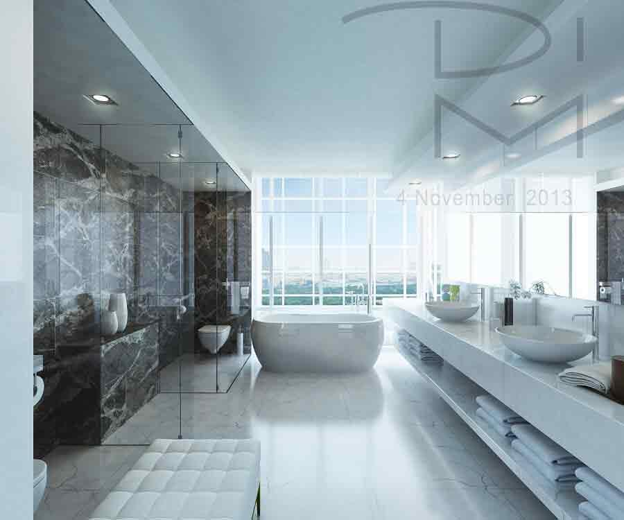 Master Toilet & Bathroom