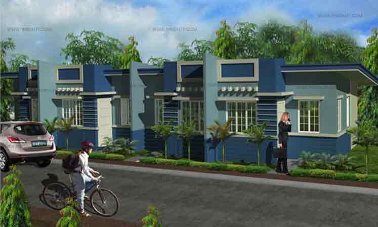 Amber Model House