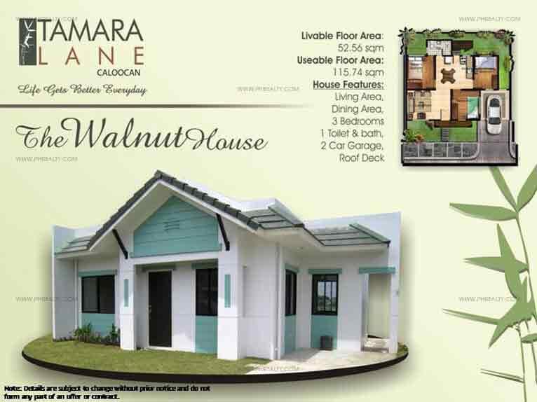 Walnut Model House