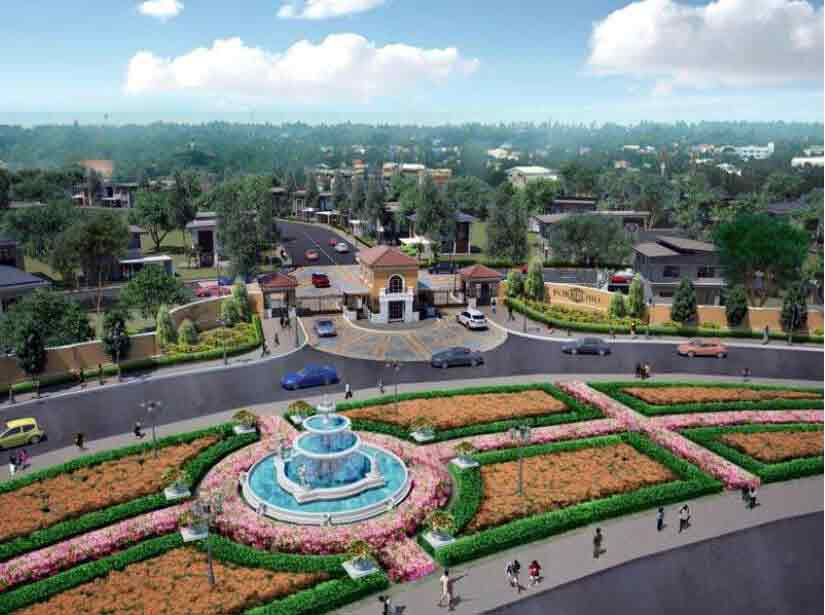 The Fountain Grove
