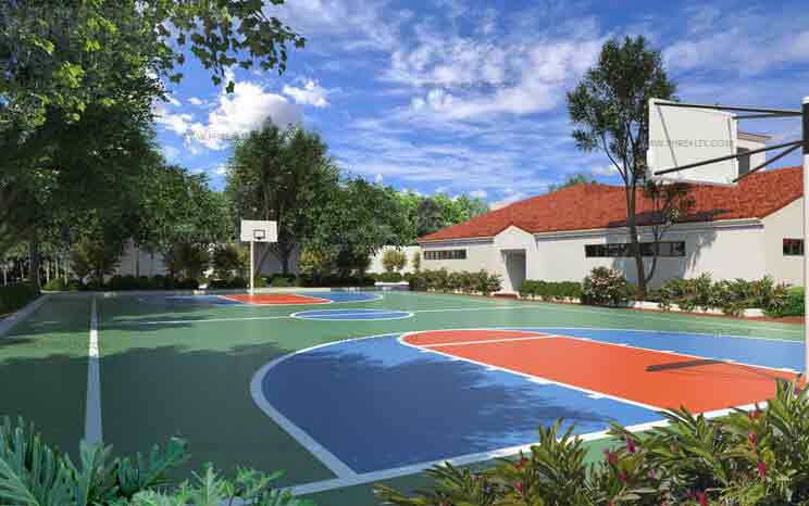Clubhouse Basketball Court