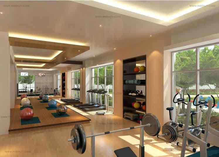 High End Gym