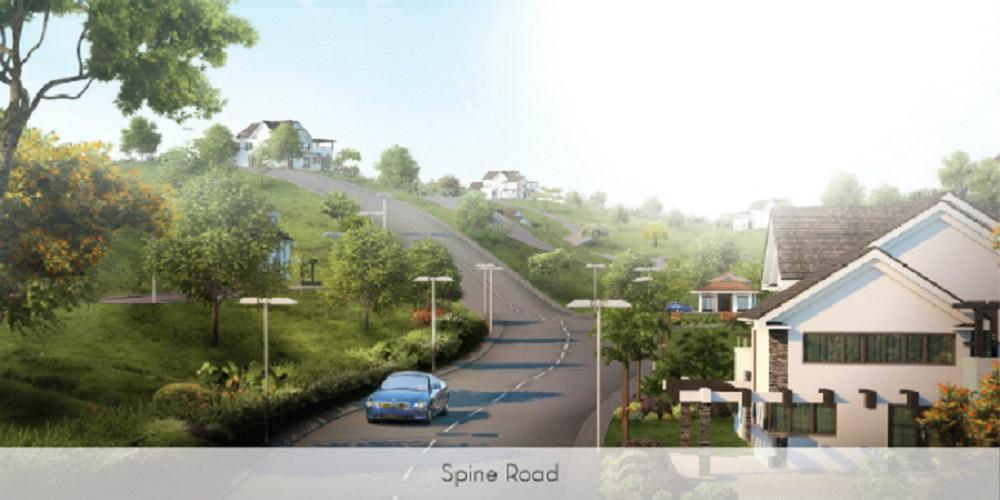 Spine Road